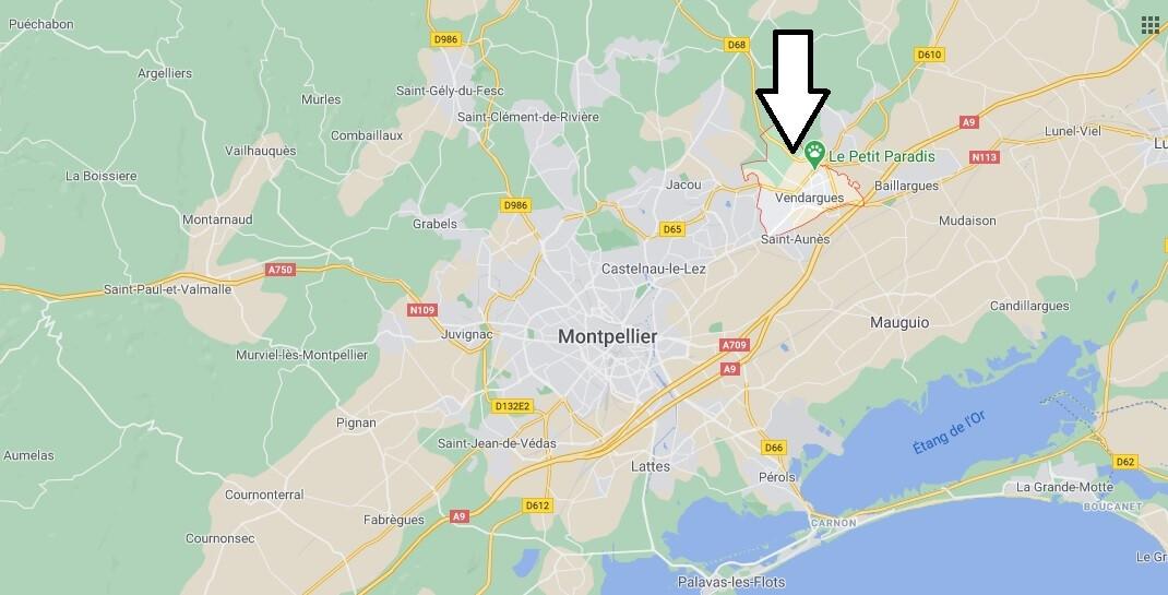 Où se trouve Vendargues