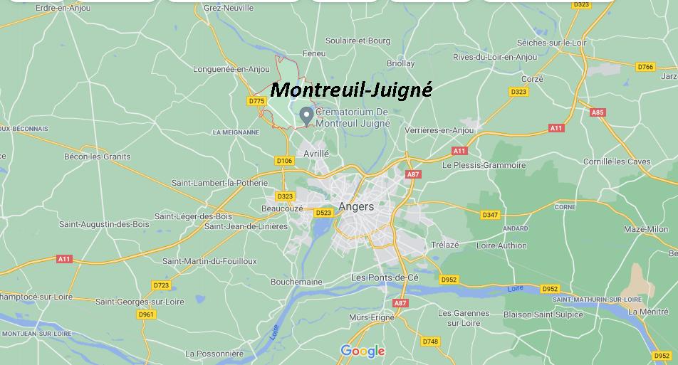 Où se situe Montreuil-Juigné (49460)