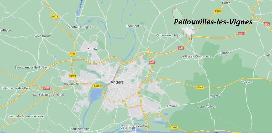 Où se situe Pellouailles-les-Vignes (49112)