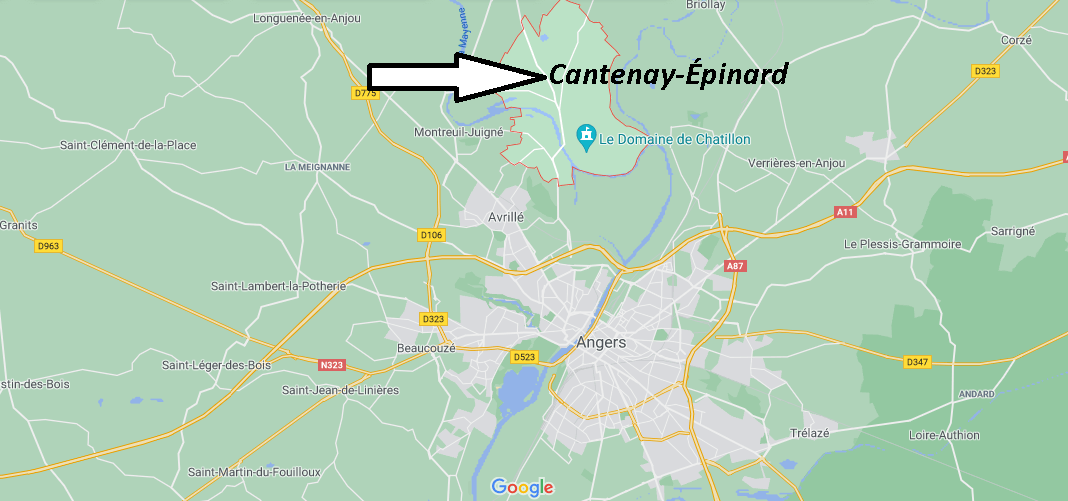 Où se trouve Cantenay-Épinard