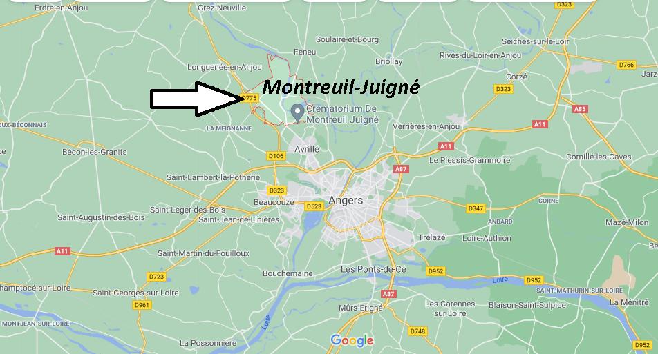 Où se trouve Montreuil-Juigné