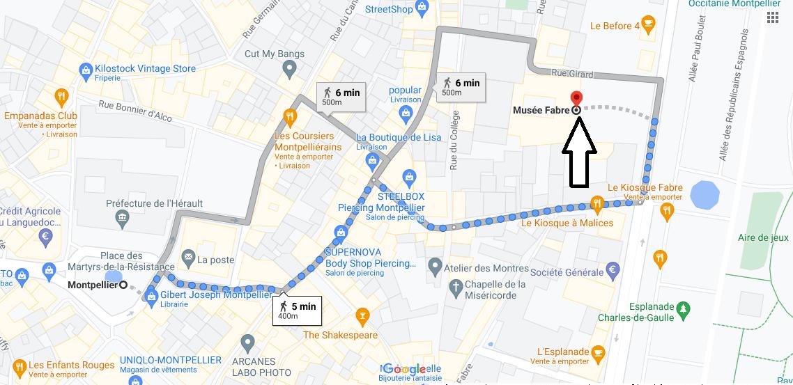 Où se trouve Musée Fabre