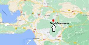 Où se trouve Saint-Savournin