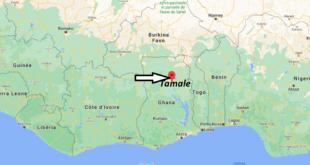Où se trouve Tamale